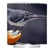 Breakfast Shower Curtain by Skip Willits