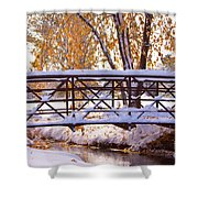 Bridge Over Icy Waters Shower Curtain by James BO  Insogna