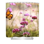 Butterfly - Monarach - The Sweet Life Shower Curtain by Mike Savad