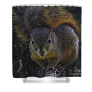 Can I Eat The Camera Shower Curtain by Heiko Koehrer-Wagner