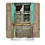 Cat in the Window Shower Curtain by David Patterson