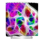 Chambers Of The Heart Shower Curtain by Judi Bagwell