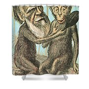 Charles Darwin Caricature, 1874 Shower Curtain by Science Source