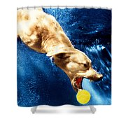 Chase Shower Curtain by Jill Reger