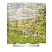 Chatsworth Shower Curtain by Tim Scott Bolton