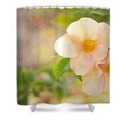 Closeness Shower Curtain by Jenny Rainbow