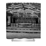 Coconut Shy 2 Shower Curtain by Adrian Evans
