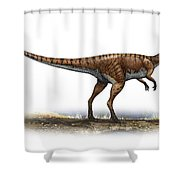 Coelophysis Bauri, A Prehistoric Era Shower Curtain by Sergey Krasovskiy