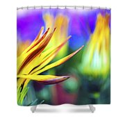 Colorful Flowers Shower Curtain by Sumit Mehndiratta