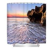 Coquillage Shower Curtain by Debra and Dave Vanderlaan