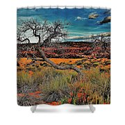 Coral Dunes Shower Curtain by Benjamin Yeager