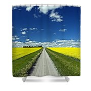 Country Road With Blooming Canola Shower Curtain by Dave Reede