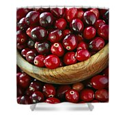 Cranberries In A Bowl Shower Curtain by Elena Elisseeva