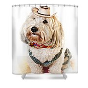Cute Dog In Halloween Cowboy Costume Shower Curtain by Elena Elisseeva
