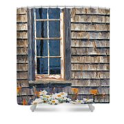 Daisies And Daylilies Shower Curtain by Verena Matthew