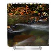 Dark Water Autumn Shower Curtain by Mike  Dawson