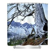 Dead Spruce In Old Forest Fire, Nabob Shower Curtain by David Nunuk