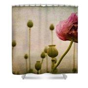 Depth Of Poppy Field Shower Curtain by Priska Wettstein