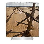 Desolate Shower Curtain by Heather Applegate