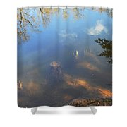 Different Worlds Shower Curtain by Karol Livote