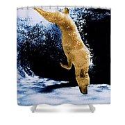 Diving Dog Shower Curtain by Jill Reger