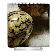 Dragon Eggs Shower Curtain by Judi Bagwell