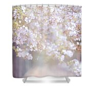 Dreaming Of Spring Shower Curtain by Jenny Rainbow
