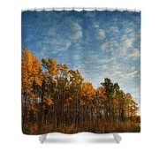 dressed in autumn colors Shower Curtain by Priska Wettstein