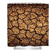 Dried Terrain Shower Curtain by Carlos Caetano