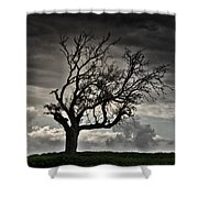 Dry Sunset Shower Curtain by Stelios Kleanthous