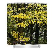 Dun Na Ri Forest Park, County Cavan Shower Curtain by Peter McCabe