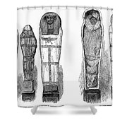Egypt: Royal Mummies, 1882 Shower Curtain by Granger