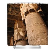 Egypt Temple Of Dendara Shower Curtain by Bob Christopher