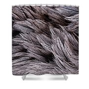 Emu Feathers Shower Curtain by Hakon Soreide