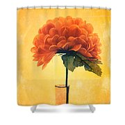 Estillo - 01i2t03 Shower Curtain by Variance Collections