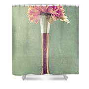 Estillo Vase - S01t04 Shower Curtain by Variance Collections