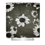 Even In Darker Days Shower Curtain by Laurie Search