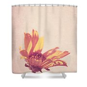 Expression - S07ct01 Shower Curtain by Variance Collections