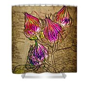 Faerie Caps Shower Curtain by Judi Bagwell