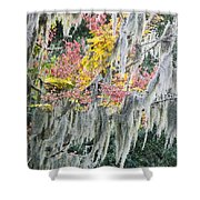 Fall Colors In Spanish Moss Shower Curtain by Carolyn Marshall