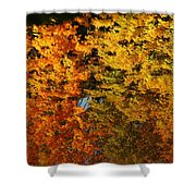 Fall Textures In Water Shower Curtain by LeeAnn McLaneGoetz McLaneGoetzStudioLLCcom