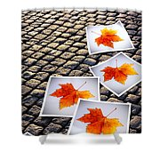 Fallen Autumn  Prints Shower Curtain by Carlos Caetano
