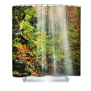 Falling Softly Shower Curtain by Darren Fisher