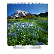 Fields Of Paradise Shower Curtain by Mike  Dawson
