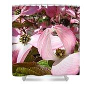 Fine Art Prints Pink Dogwood Flowers Shower Curtain by Baslee Troutman
