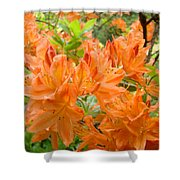 Floral Art Prints Orange Rhodies Flowers Shower Curtain by Baslee Troutman