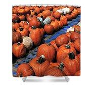 Florida Gator Pumpkins Shower Curtain by David Lee Thompson