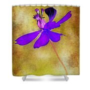 Flower Take Flight Shower Curtain by Judi Bagwell