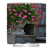 Flowers On The Steps Shower Curtain by Mary Machare