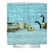 Follow The Leader Shower Curtain by Karen Wiles